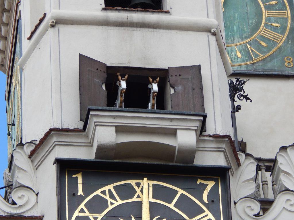 cabras ayuntamiento poznan