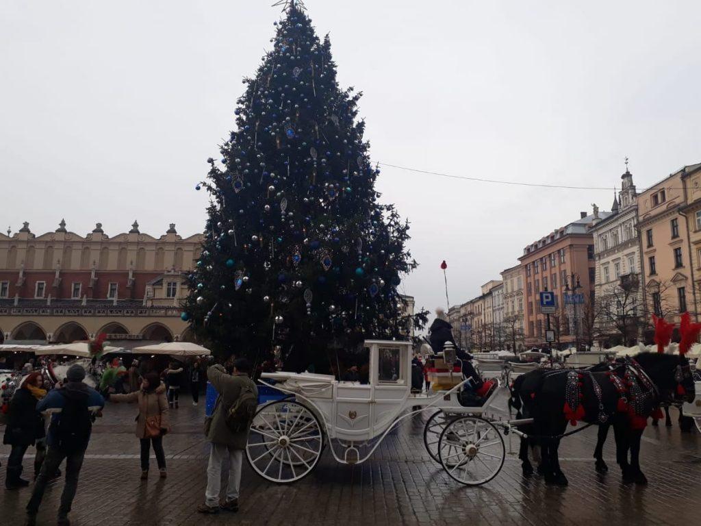 cracovia árbol de navidad