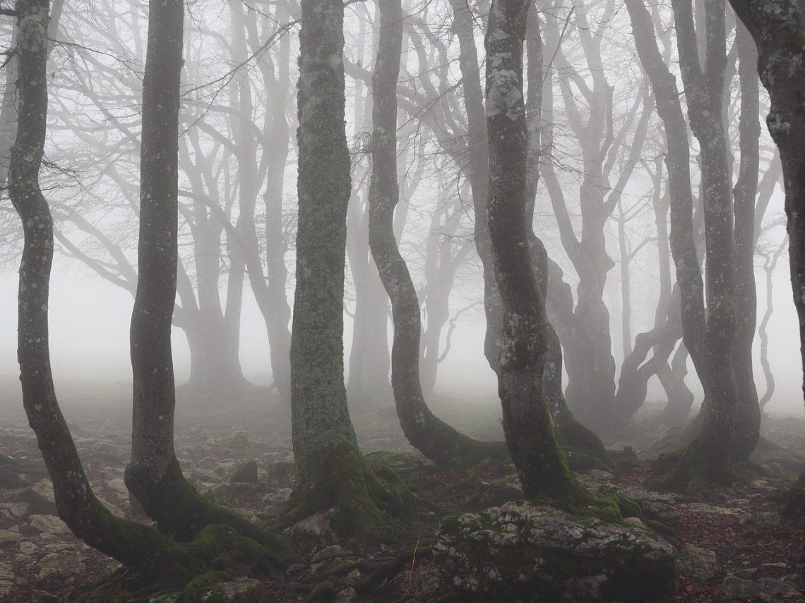 lugares embrujados polonia